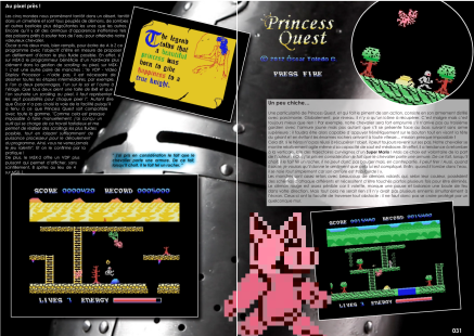 Article Princess Quest sur MSX
