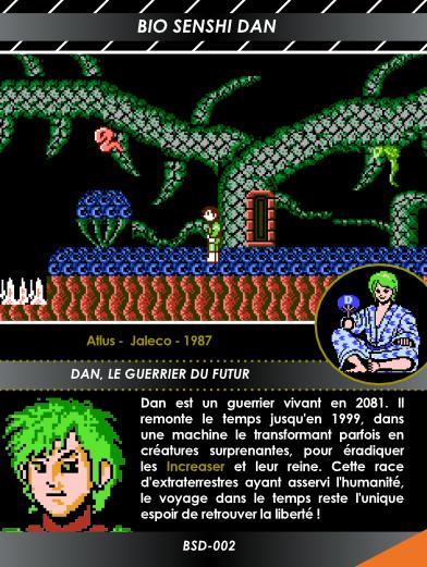 Carte NES 3