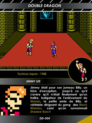 Carte NES  6
