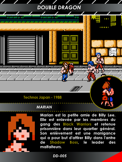 Carte NES 7