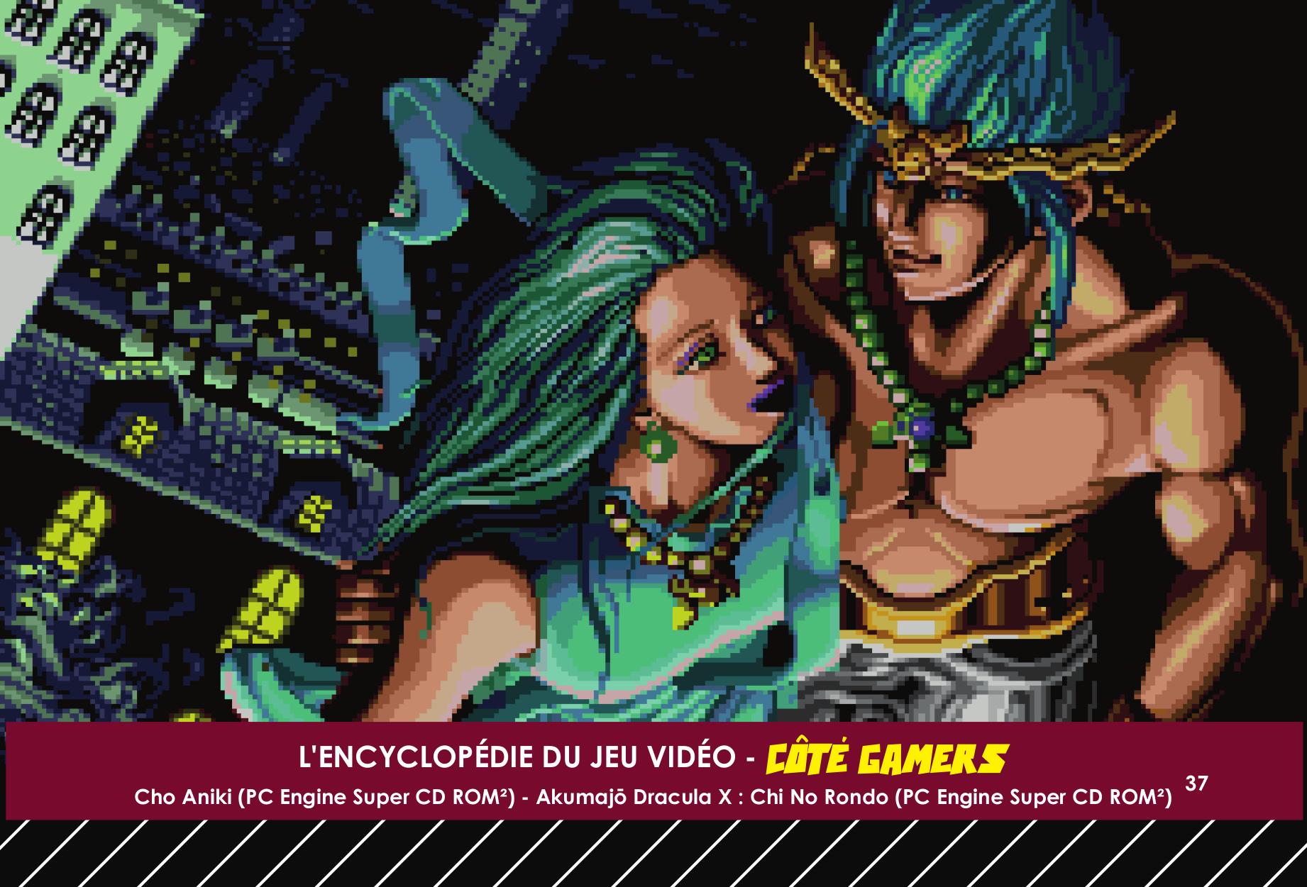 Fiche encyclopédie du jeu vidéo Cho Aniki illustration